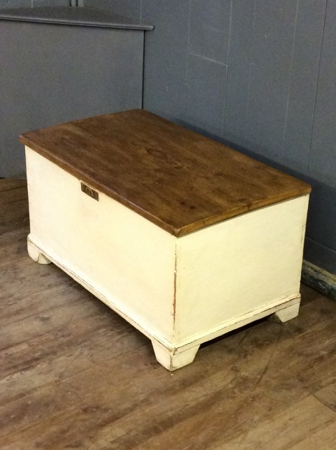 Painted chest/blanket box